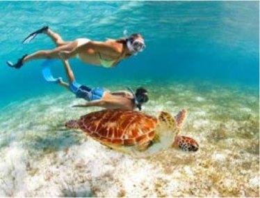 caribbean-snorkel-2