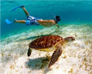 caribbean-snorkel-3
