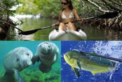 florida-ACTIVITY-kayak-with-fish