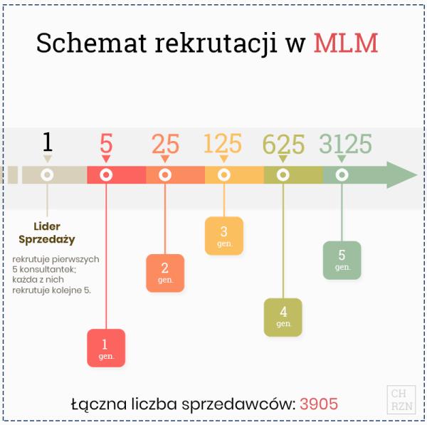 Schemat rekrutacji w MLM - infografika