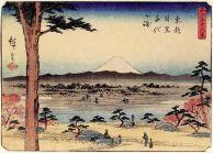 800px-chiyo_promentory_at_meguro_in_eastern_capital_28hiroshige2c_185229