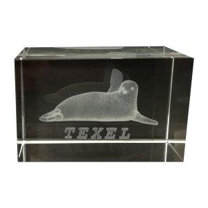 3D Kristal Blok met zeehond van Texel