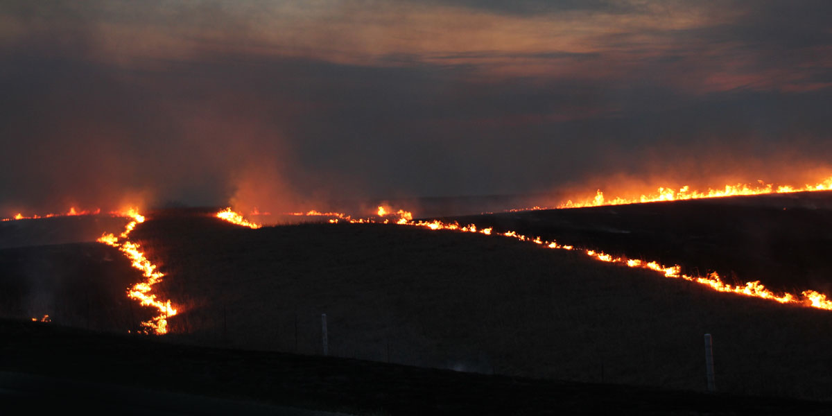 Prairie Burn Viewing Chase County Kansas Find Yourself