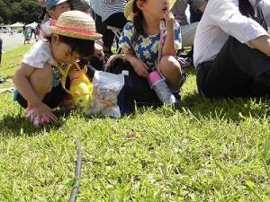 六呂師高原アルプス音楽祭2014 アルプス音楽団の演奏を聞きながらマルチケーブルをいじるお子ちゃま/どこまでもアマチュア