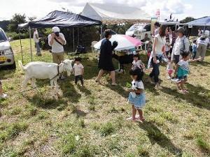 六呂師高原アルプス音楽祭2014 やぎふれあい広場/どこまでもアマチュア