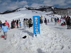 さかだに雪まつり 雪のすべり台の会場/どこまでもアマチュア