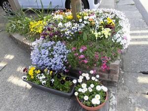 ミニミニ家庭菜園&ミニガーデニング 花壇の脇に置いてあるプランター/どこまでもアマチュア