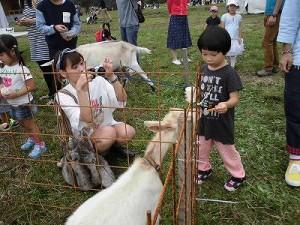 六呂師高原アルプス音楽祭2015 ヤギふれあい広場/どこまでもアマチュア