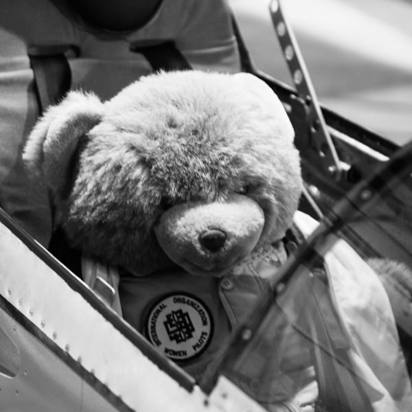 Teddy bear in jump seat of a jet.