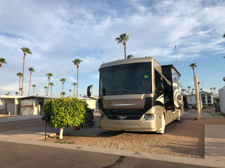 Almost looks like a palm tree is growing out the top of our RV. :)