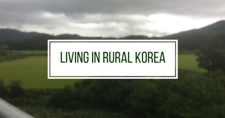 My Struggle Living in Rural Korea