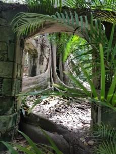 Ruins at Balenbouche Estate St Lucia