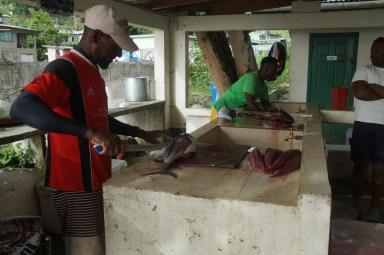 Die gefangenen Fische werden für den Verkauf vorbereitet