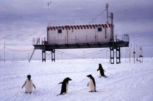 http://www.antarcticaedu.com/territory.htm