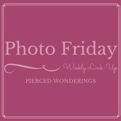 Photo-Friday-Blog-Button-1