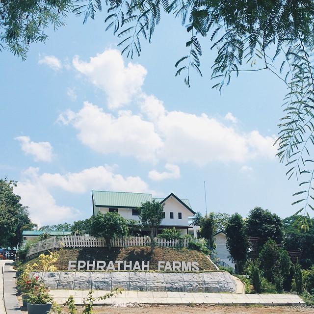 Ephrathah Farms