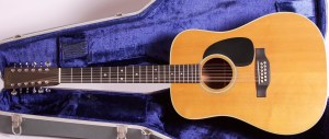 Martin-12-string-D28-310866-case