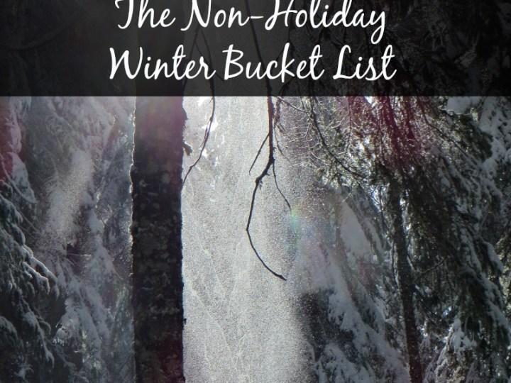Non Holiday Winter Bucket List