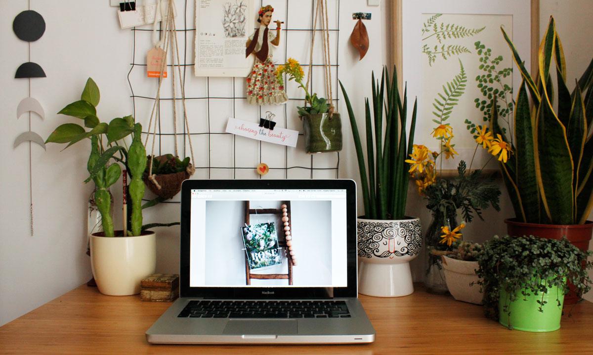 scrivania con piante
