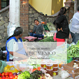 Tianguis market in Ajijic