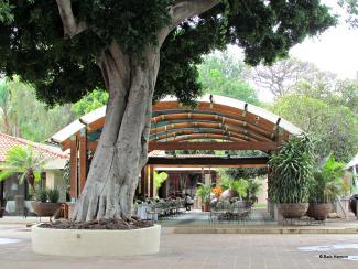 Real de Chapala Hotel in Ajijic, Mexico
