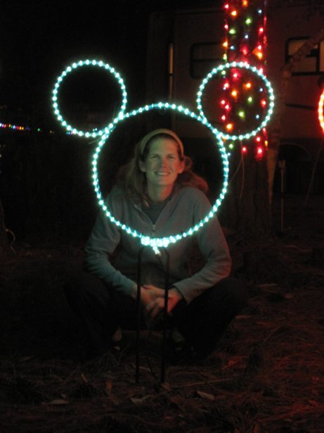 disney lights 6