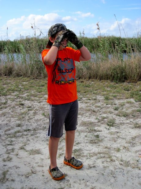 searching for gators from shore