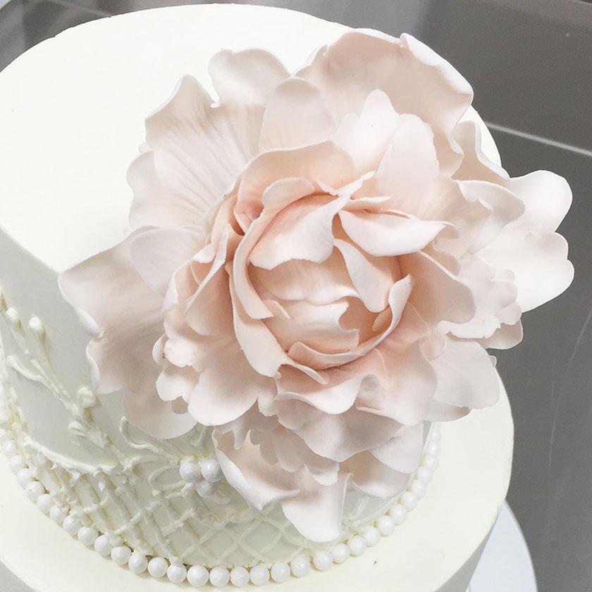 pink-petals-detail