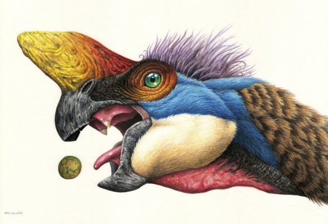 <i>Oviraptor </i>© Esther Van Hulsen. Shared here with the artist's permission.