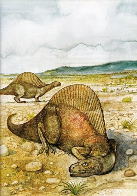 Spinosaurus by Tony Morris
