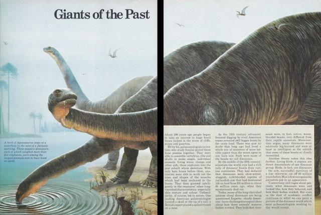 Apatosaurus by Bernard Robinson