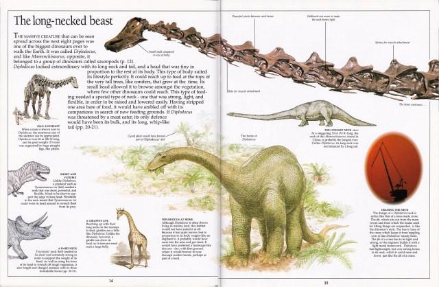 Diplodocus neck spread