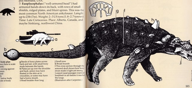 Field Guide Euoplocephalus