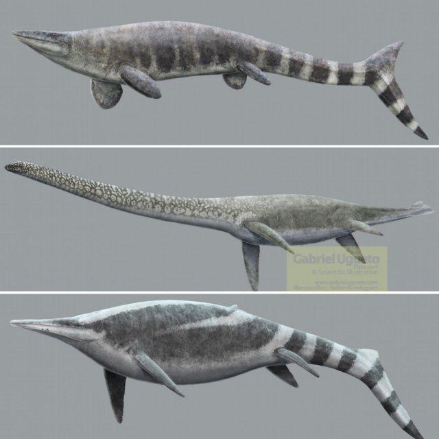 Three panel illustration featuring the marine reptiles Tylosaurus, Thalassomedon and Shonisaurus by Gabriel Ugueto