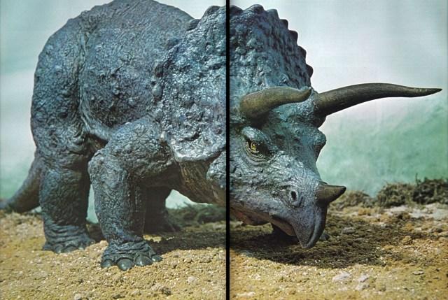 Triceratops by Arthur Hayward
