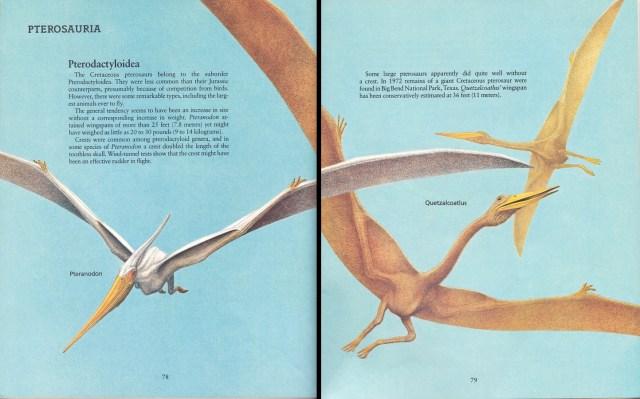 Pteranodon and Quetzalcoatlus by Peter Zallinger