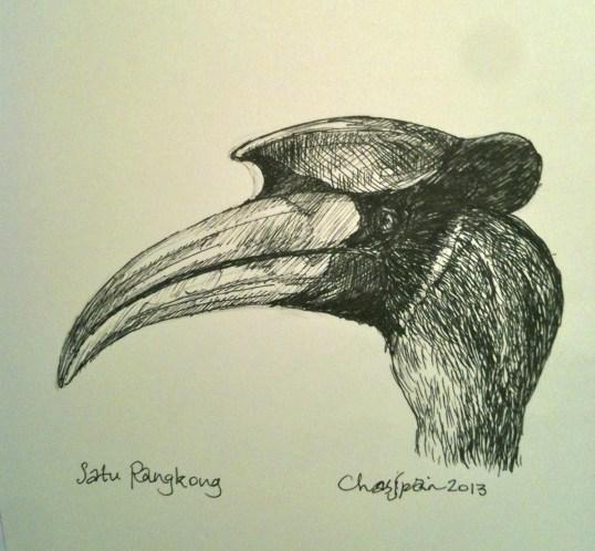 Satu Rangkong (One Hornbill)