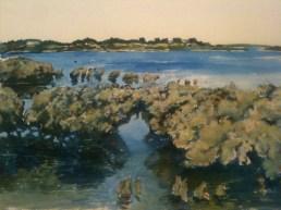 Mangroves at Hastings - 1st wash