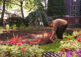 Gardeners Westminster 3
