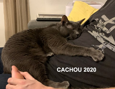 CACHOU-01