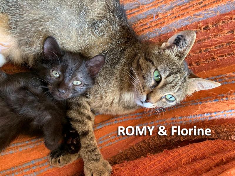 ROMY-FLORINE