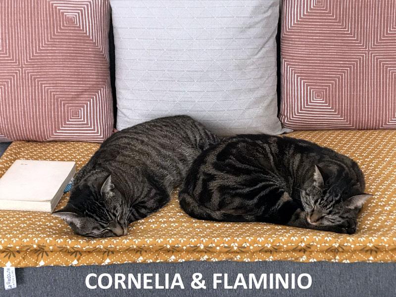 CORNELIA-FLAMINIO-07