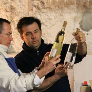 présentation vin sicut vitis