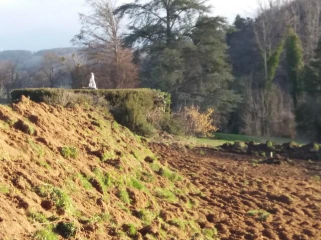 Saconay - Un terrain bien plat pour les chevaliers