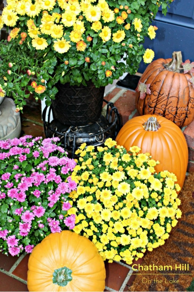 Pumpkins and Mums on the Porch www.chathamhillonthelake.com