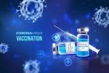 coronavirus vaccination graphic