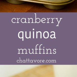 cranberry quinoa muffins | recipe from Chattavore.com