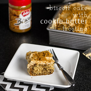 This Biscoff cake with cookie butter frosting is an easy, moist, and fabulously tasty dessert!   recipe from chattavore.com