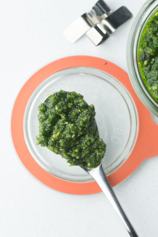 This kale pesto with almonds is a quick and easy sauce that is great on pasta, breads, and sandwiches or mixed into vegetable dishes. | Recipe from Chattavore.com