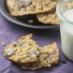 One Bowl Oatmeal Chocolate Chip Cookies + Video